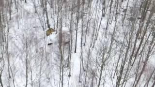 охота с лайкой на лося с квадрокоптера 2