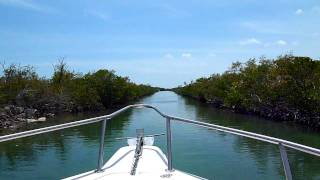 Florida Key West boat through mangroves 6May11