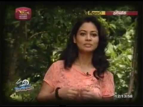 Pooja Umashankar | Roopawalokana Interview On Jathika Rupavahini