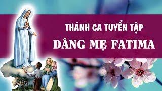 Thnh Ca Dng c M Fatima - Tuyt Phm Thng Mn Ci Knh c M - Thnh Ca Tuyn Chn