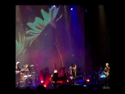 Deform To Form A Star - Steven Wilson (Caracas, 15/04/2012)