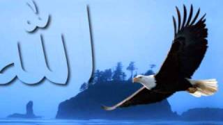 Video Ilamoti - Arabic Nasheed (Just Beautiful) download MP3, 3GP, MP4, WEBM, AVI, FLV Juni 2018