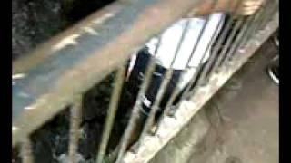 Aventura - Ponte Mister thomas