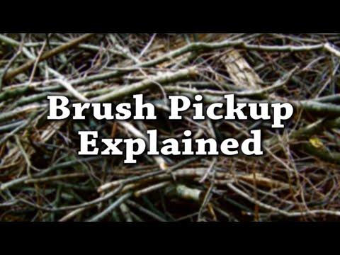 Brush Pickup Explained - Victoria, TX