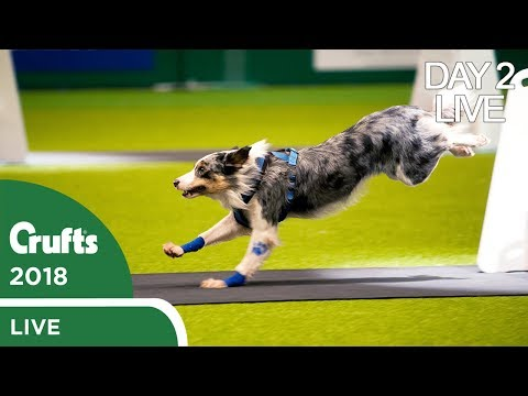 Day 2 Live Stream | Crufts 2018