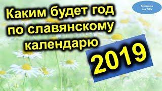 Каким будет 2019 год по славянскому календарю