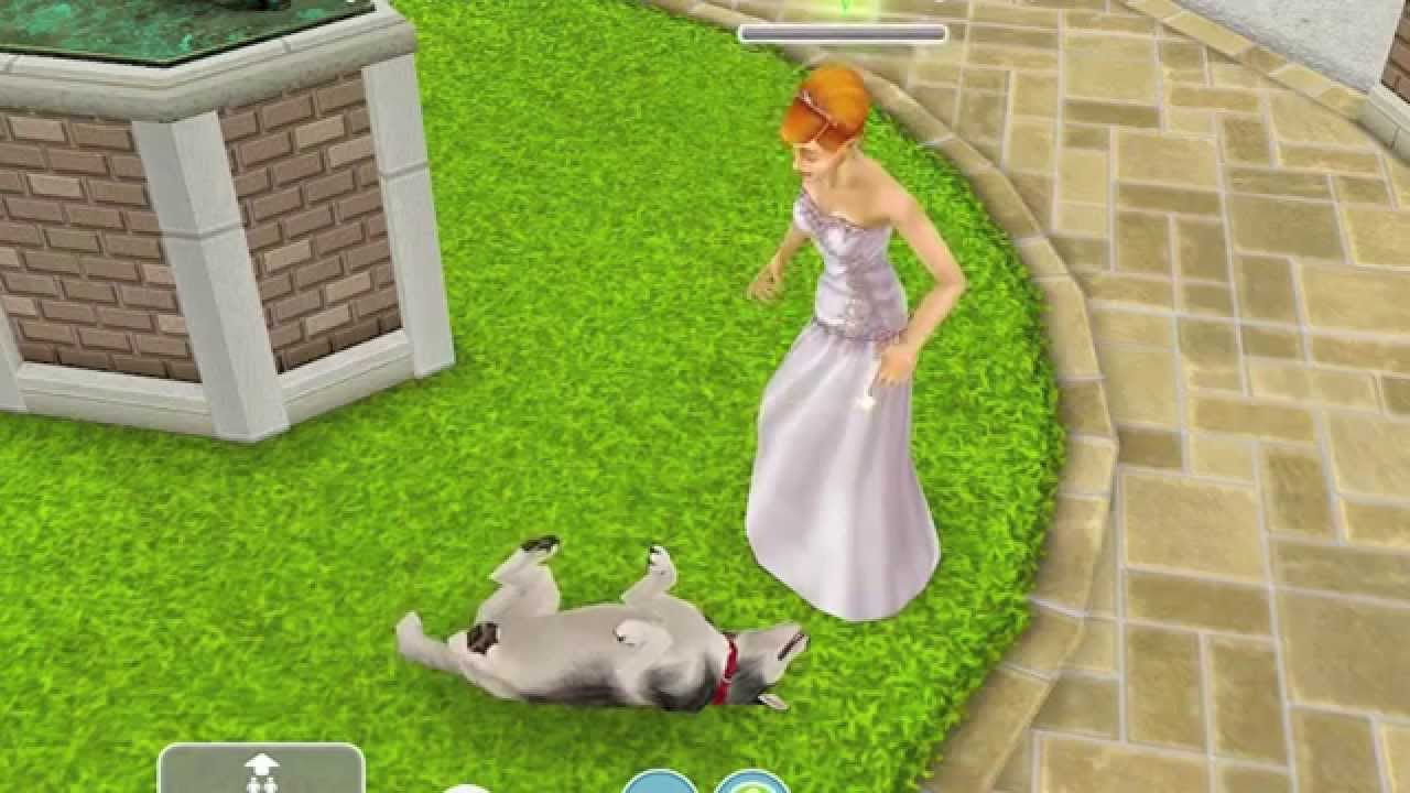 how to get the woodworking hobby in sims freeplay