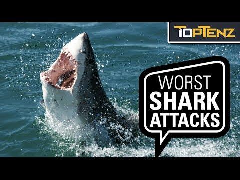 The Worst SHARK ATTACKS Ever