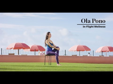 In-flight Wellness