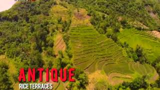 Antique Rice Terraces: Rediscovering Visayas