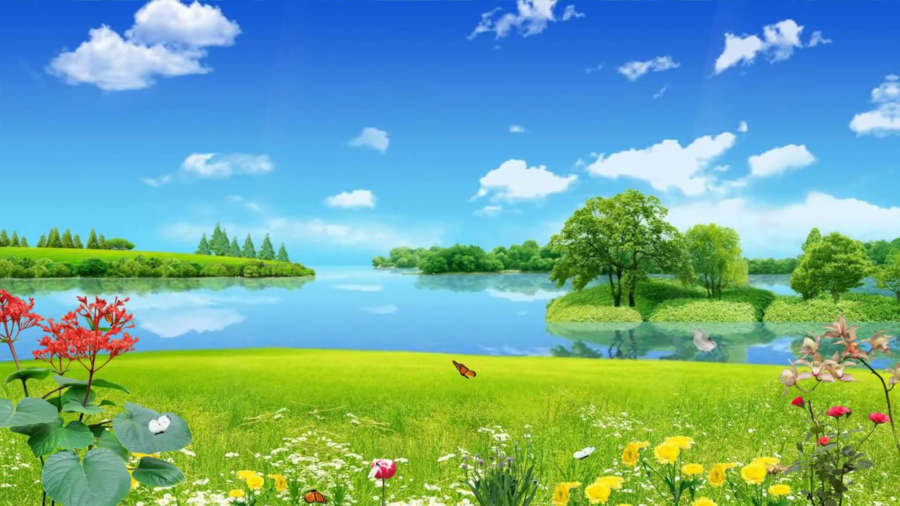 Beautiful nature animated wallpaper - YouTube