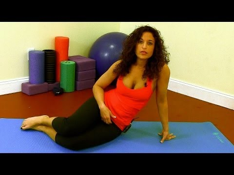 20 Minute Yoga Workout for Beginners, Home Exercise Fitness Training Routine,  Austin TX