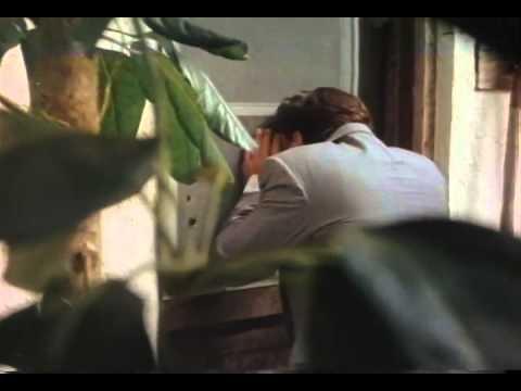 The Maddening Trailer 1995