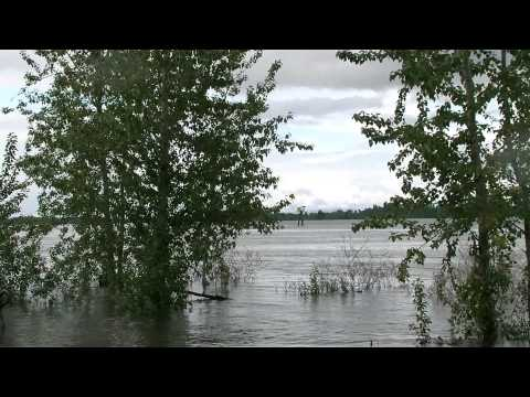 Columbia River At Flood Stage, Portland Airport Levee Breach Dramatization