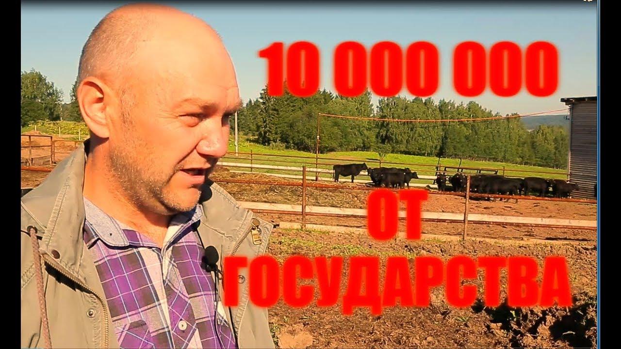 Личный опыт получения гранта. Как получить 10 млн рублей от государства.