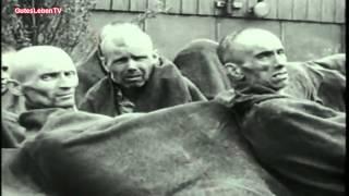 Die Zerschlagung der freien Gewerkschaften 1933