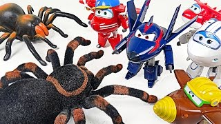 Go Super Wings 2! Lion Guard save by defeating Giant Tarantula corps! - DuDuPopTOY