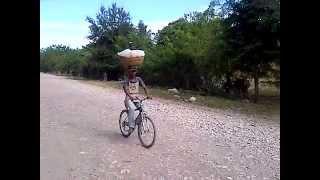 transport moderne du pain