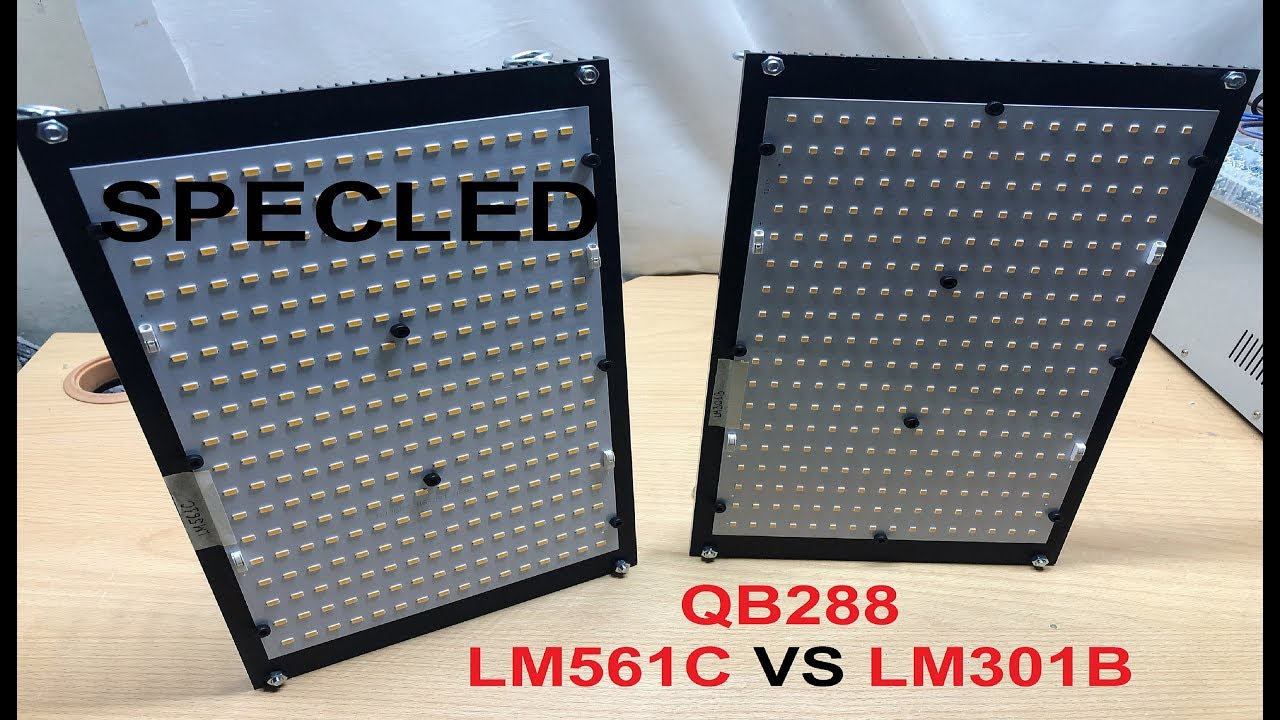 Overview Quantum Board 288  Connection  Measuring LM561C VS LM301B