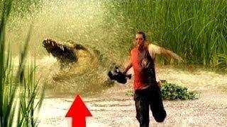 Это крокодилы, детка. Это надо видеть