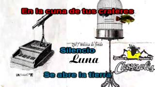 Luna - Zoe (Cvr) Karaoke