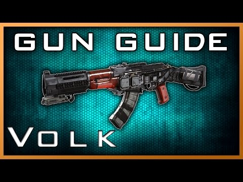 Best Volk Variant! | Infinite Warfare Gun Guide #6 (Detailed Weapon Stats & Review)