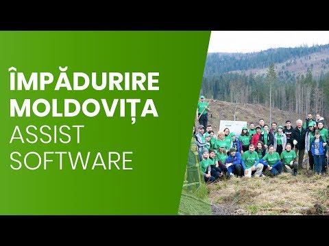 Campanie de împădurire la Moldovița | ASSIST Software