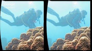 3D Ocean Explorer | VR  Google Carboard , VR Box , Gear VR , 3D SBS