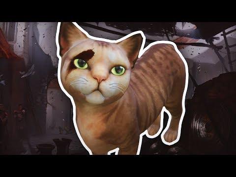 CAS: Der Dragon Age Kater 💗 DIE SIMS 4 Staffel 5