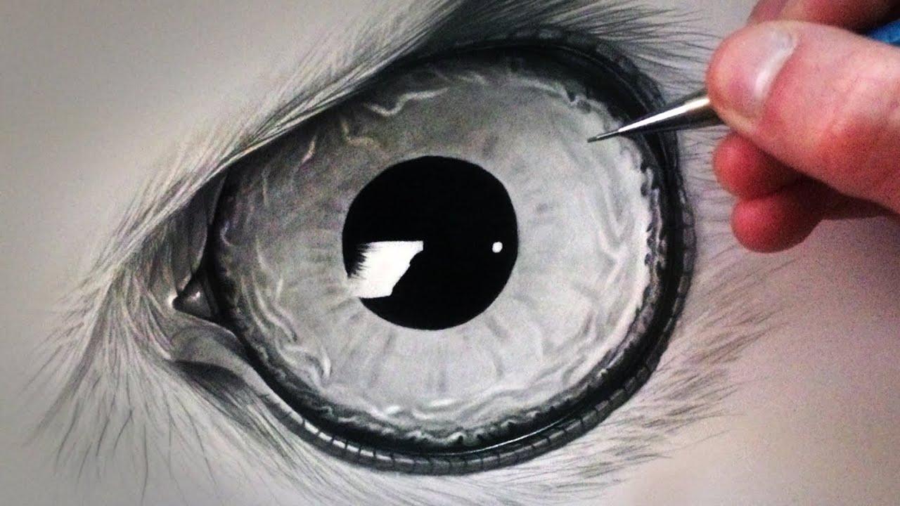 How To Draw An Owl Eye Youtube