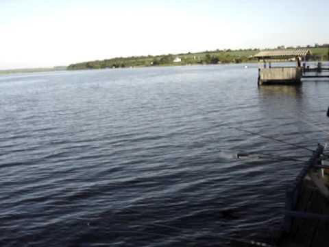 pescaria rio dourado lins