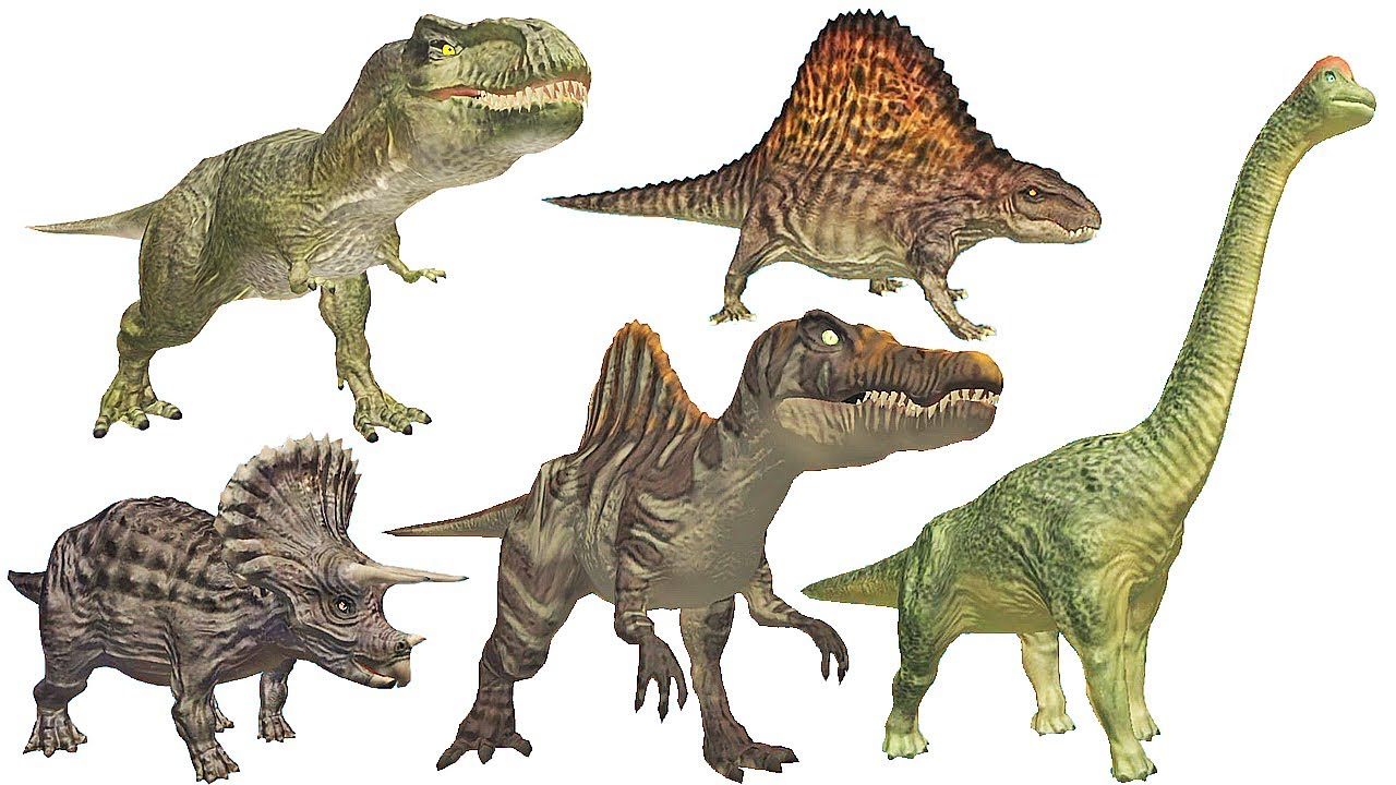 TYPES OF DINOSAURS EBOOK