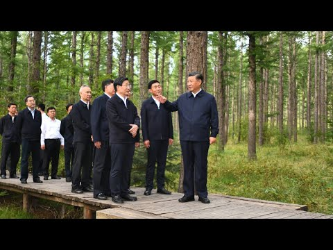 CGTN:从贫瘠的土地到世界上最大的人造森林,西汉巴和中国生态努力