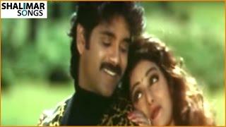 Govinda Govinda Movie || Andamaa Anduma Video Song|| Nagarjuna, Sridevi