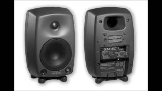 Genelec 8130A