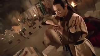 Jet Li Fight - Kung Fu Cult Master