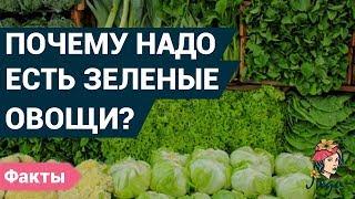 Почему полезно кушать зеленые овощи? Истинная польза овощей.