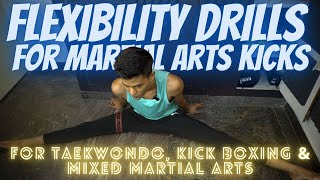 Flexibility Drills for Martial Arts Kicks | For Beginners
