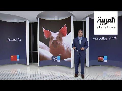 من الصين بلد كورونا.. وباء آخر يهدد البشرية ينتقل من الخنازير للإنسان  - نشر قبل 12 ساعة