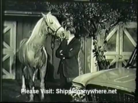 Mr Ed The Talking Horse Studebaker Commercial