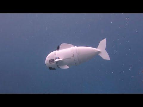 Meet SoFi, the robot that swims like a fish