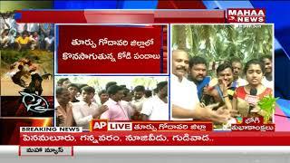 Huge Betting at Cock-Fights in East Godavari | Mahaa News