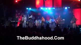 Buddhahood ~ Tree Ditty ~ January Thaw 2013 Water Street Music Hall Rochester NY