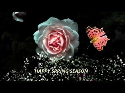 Happy spring season wishesblessingsprayersgreetingsquotessms happy spring season wishesblessingsprayersgreetingsquotessmssayingse cardwhatsapp video youtube m4hsunfo