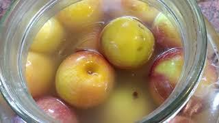Kiszone Jabłka - Praktyka u Praktyka