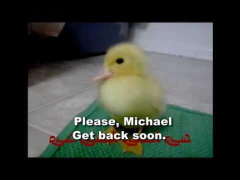 Get Well Michael Barlow Part II