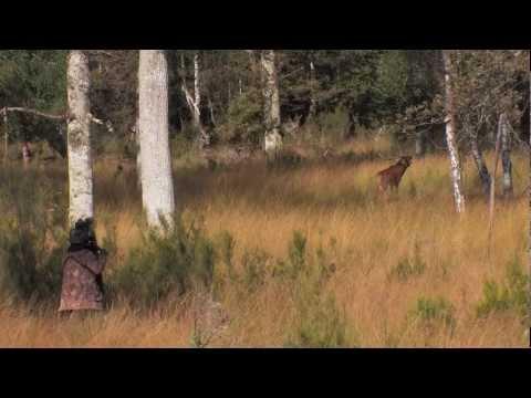 Visages Villages : Rencontre avec Agnès Varda et JRde YouTube · Durée:  13 minutes 10 secondes