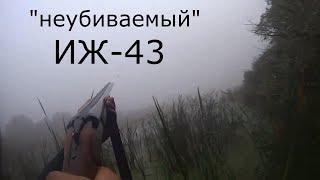 Неубиваемый  ИЖ 43