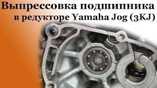 ULARNING QO'LLARI bilan, gearbox Yamaha bu Jog ko'r bir socket (3KJ)bilan ko'tarib olishdan