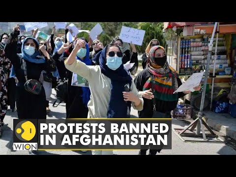 Afghanistan: Taliban bans protests in the country   Latest World English News   WION News